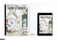 NewYorker_Nov_photo2
